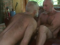 Horny daddies Marco Mazza and Allen Silver fucking, Added: 2013-05-05 by Pantheon Bear